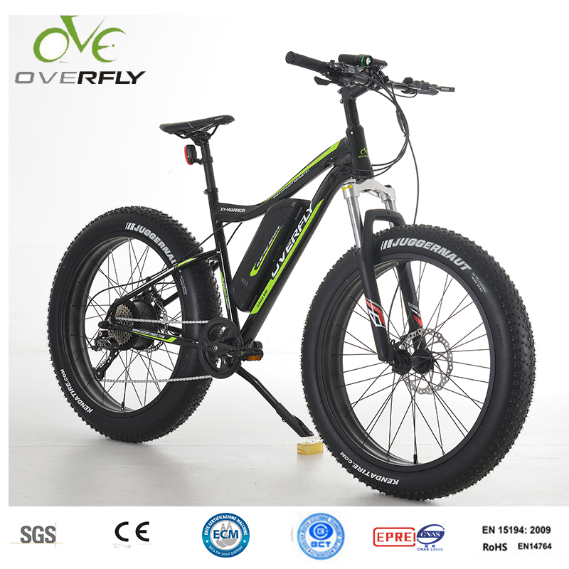 electric bike 48 volt fat e-bike mountain bicycle MTB