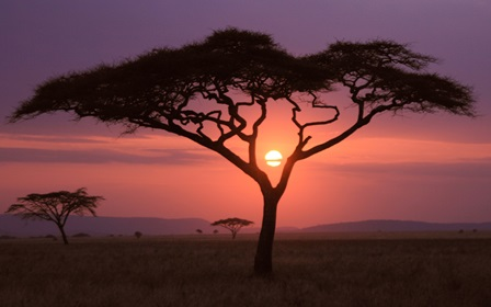 african beautiful nature landscape sunset- Home Decoration Canvas Poster