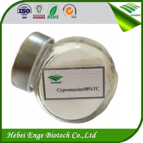 Hot sell Cyromazine 98%TC,99%TC Agrochemical Insecticide in India Philippines
