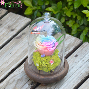 Preserved Fresh Flower Box Gift with Glass Pot and Wooden Base Preserved Dried Craft Flower
