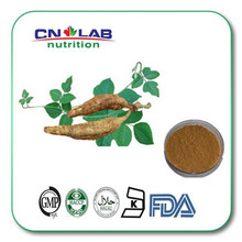 Factory supply herb kudzu / Kudzu root extract puerarin powder