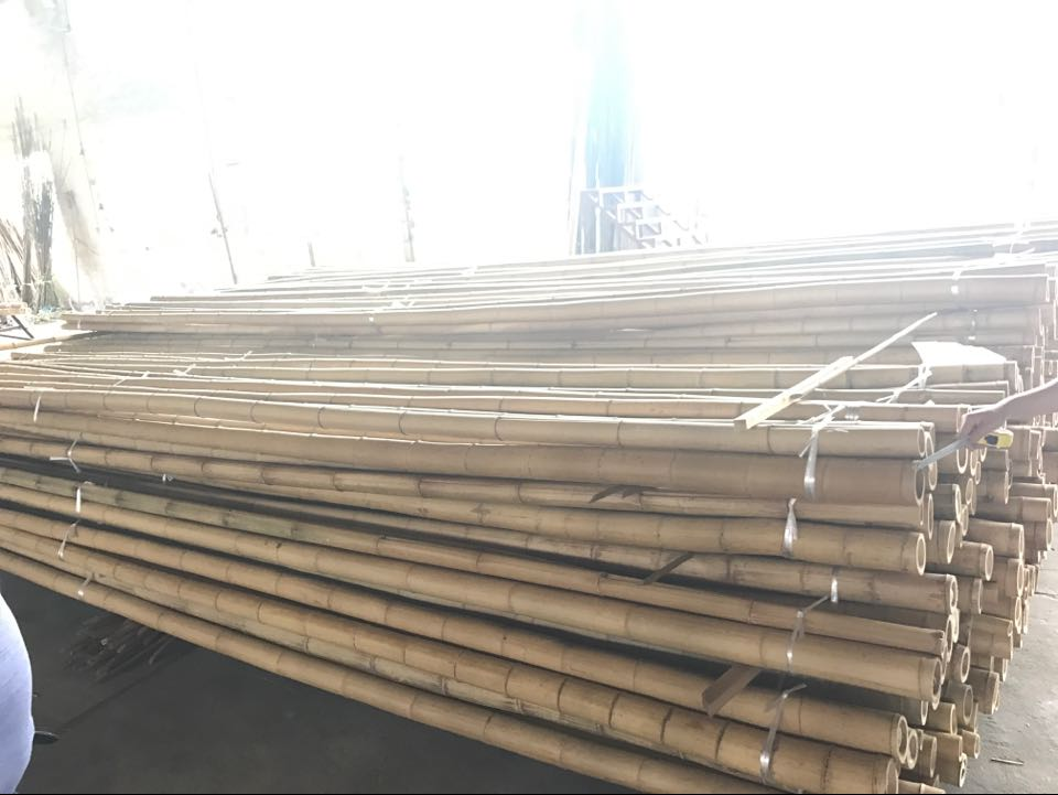 FD-Wholesale Large Dry Raw Moso Bamboo Poles for Sale