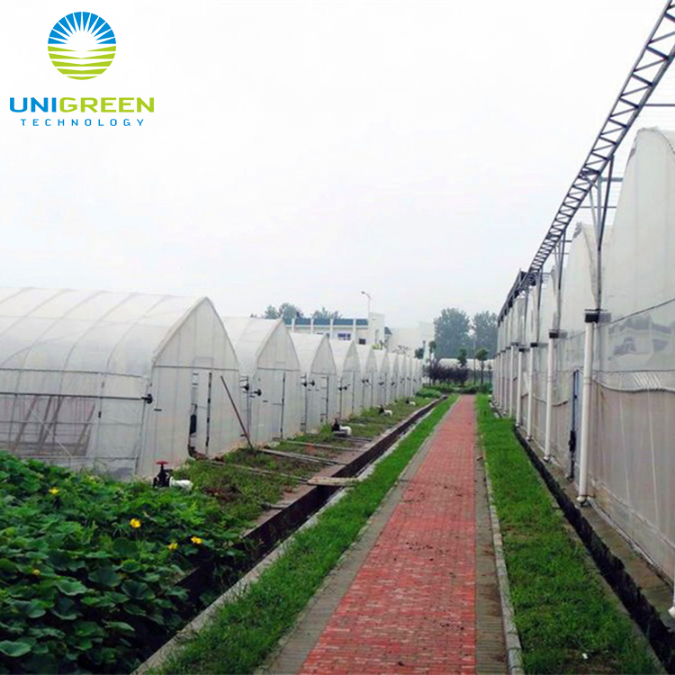 All Top Quality Material plant nursery greenhouse