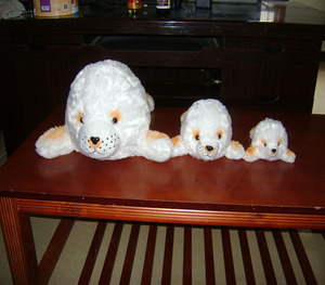 All of our Soft Toys 39510 r127 Harp the White Seal,a Seal or Sea Lion Teddy Bear or Soft Toy