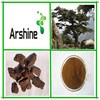 Chinese herb extract top quality 95% proanthocyanidins pure pine bark extract powder