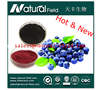 Blueberry Juice Powder ,Blueberry Berry Juice Powder, Blueberry Fruit Juice Powder