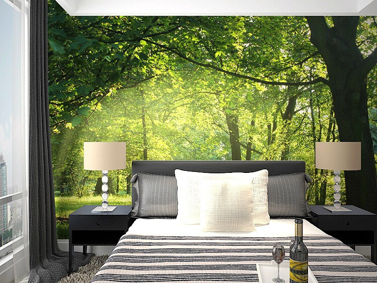 Aliexpress Com Buy Large Custom Mural Wallpapers Living: Wall Murals Photo Wallpaper Non-woven Decor Panoramic Big