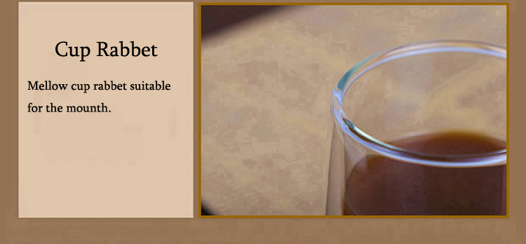 Hot sale double-walled glass Coffee cups with handle to keep warm