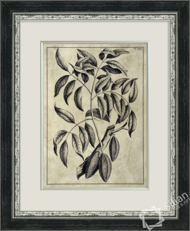 Embellished Antique Foliage III Decorative Picture Frame