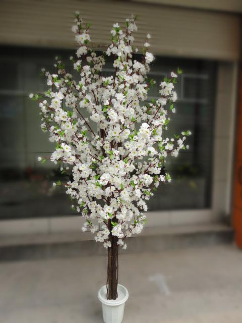 árbol De Cerezo En Flor La Boda 1 8m Vástago De Madera