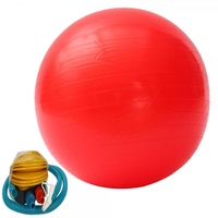 Top selling Anti Burst Exercise Balance Exercise Ball with Base 50 cm with hand pump Yoga Gym Ball