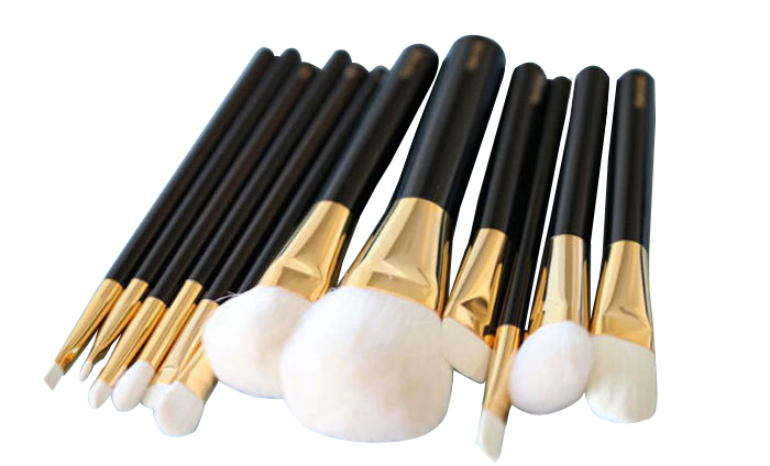 White Goat Hair 12 Pieces Professional High Quality Makeup Brush ...