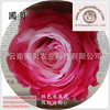Cheap Preserved Wholesale Rose Flower Gift For Local Florists Sent Out All The Year