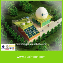 PUXIN 10m3 hydraulic pressure home biogas system for electricity generation