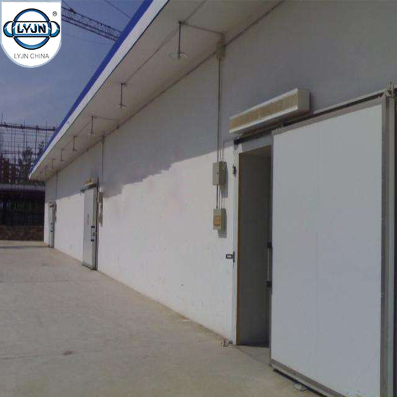 Competitive Price Professional Solution 5000t Tomato Cold Storage Room