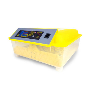 Cheap mini egg incubator for 48 eggs with egg hatchery machine price in india