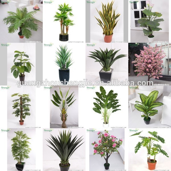 SJ12001162 Name potted decorative foliage plant plastic plant indoor