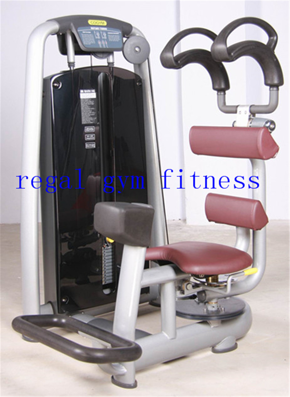 Best quality gym equipment name rotary torso machine exercise