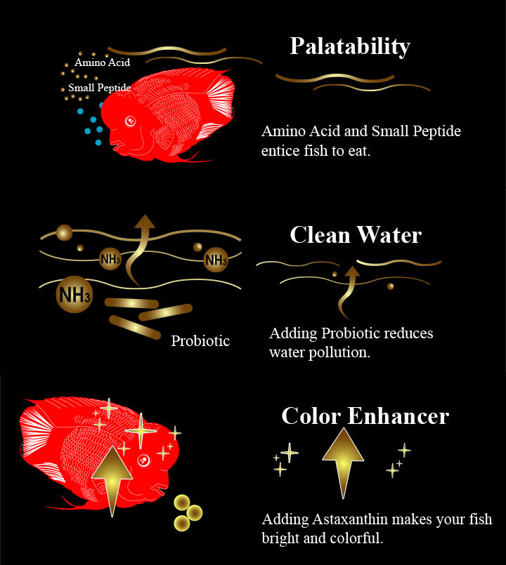 Aqua master, Red Parrot Fish & Cichlid Food, Color Enhancer, High Protein & Astaxanthin - 500g (M)