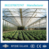 4mm toughened low iron greenhouse glass