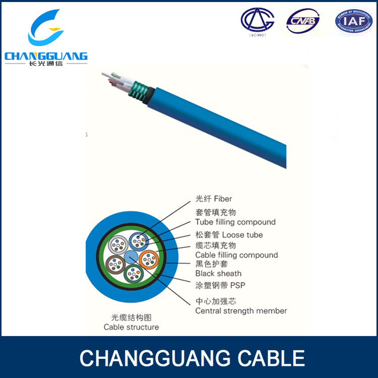 Stranded Loose Tude Mining Fibre Optical Cable with PSP and Special Sheath