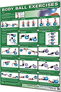 "Productive Fitness Laminated Fitness Poster - Body Ball Exercises (Core) - 24"" x 36"" Wall Chart for Home or Gym - Stability Ball Workout"