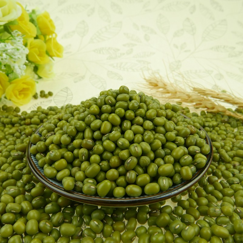 Export hot sale Mung Bean with High-quality goods packaging 450 g/bag