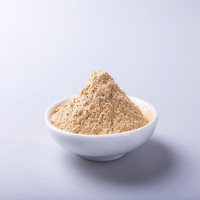 AD 25KG Per Bag Yellow Ginger Powder for Sale