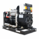 CE approved 8kW biogas electric generator price