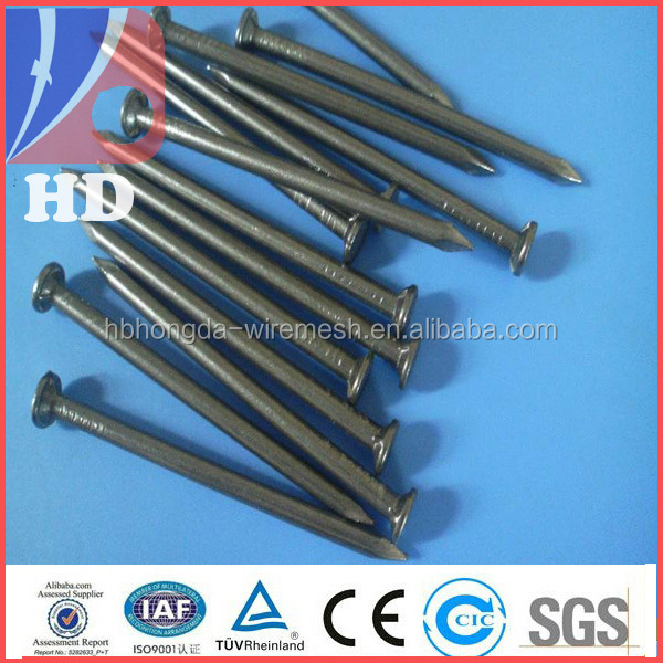 Factory price on Galvanized iron nail and polished common wire nail