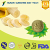 banana powder extract 10:1 natural bulk banana flavor powder