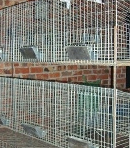 Luxury Design rabbit cages metal folding rabbit cage pet products in hot sale / layer poultry cages/rabbit cage