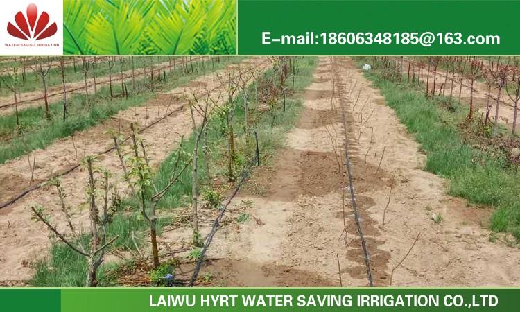 Drip Irrigation Kit Price System Inner Flat Emitter 13