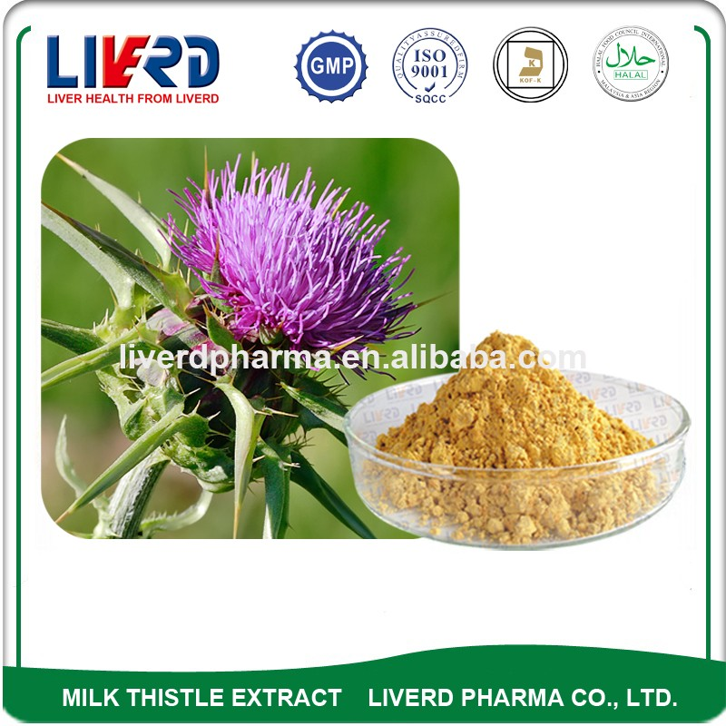 Medicinal Use Milk Thistle Extract Silymarin Milk Thistle for Liver