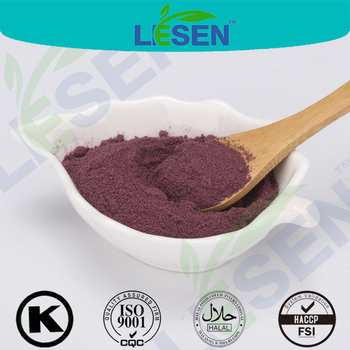 Hot Sale 100% Natural Freeze Dried Bilberry Powder Blueberry Fruit Powder