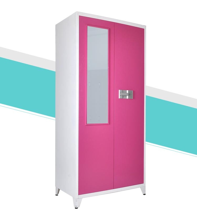 Simple 2 Door Steel Cloth Locker 2 Door Metal Indian