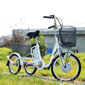 Farm Cargo Electric Tricycle/Adult Electric Dump Tricycle for Cargo for sale