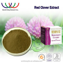 Alibaba China factory red clover extract bulk powder , stock products isoflavones 8% 40% red clover extract