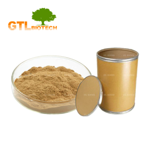 Manufacturer Supply Pine Bark Extract Powder Pine Bark Extract 10:1