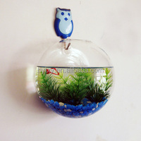 wall decoration hanging clear glass round ball vase for flower