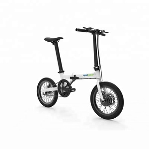 Affordable Luxury Small Folding Electric Bicycle City Ebike for Urban Commuters