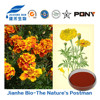 Marigold Extract Lutein with Edible Compounded Natural Dye