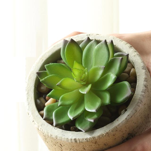 k nstliche sukkulenten k nstliche blumen mini pflanzen. Black Bedroom Furniture Sets. Home Design Ideas