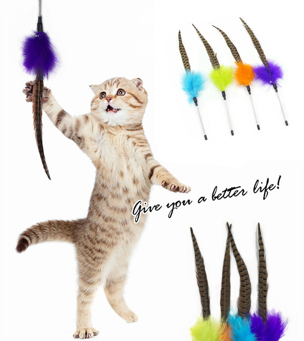 GAO XIONG PT Cat Feather Toy, Teaser and Exerciser for Cat and Kitten, Cat Play Toy Interactive Cat Wand with Bell