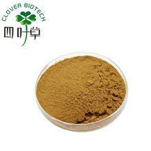 High Quality Korean Red Panax Ginseng Root Extract Powder