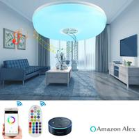 Hot Seller Dimmable, Multicolor,Voice Control & APP Control & Remote Controller,24W Smart Wifi LED Ceiling Light