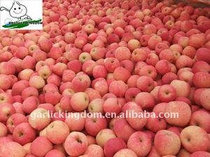 Qixia Red Fuji Apples