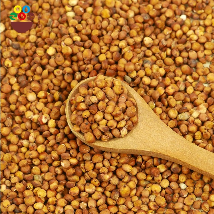 2017 Chinese Bulk hot sale Top quality red sorghum price