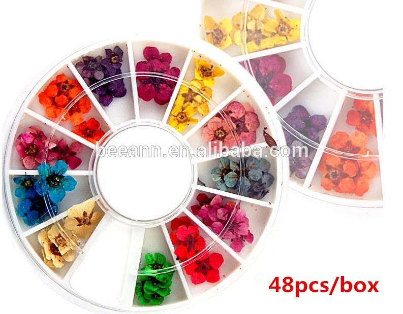 12 colors dried flower for nail art decoration 3d nail art dry flower