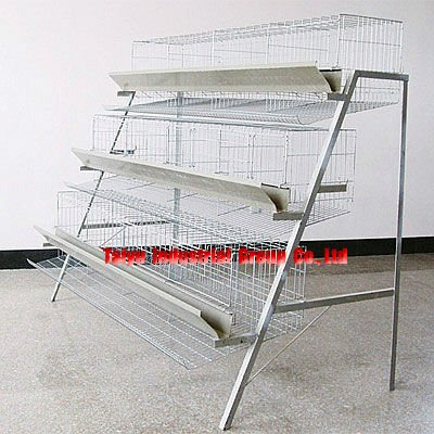 poultry farming layer cage for Nigerian chicken ( design,equipment )